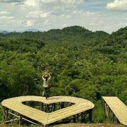 Menikmati Keindahan Alam dari Bukit Pangonan Pringsewu Lampung